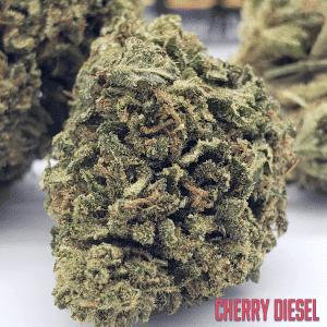 Cherry Diesel Hemp Flower Close Up