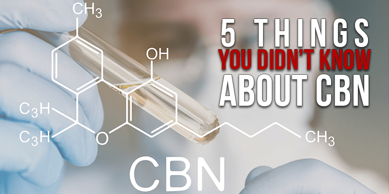 5 Things You didnt Know About CBN