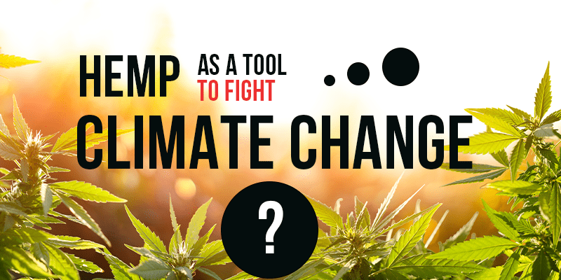 Can Hemp Help Fight Climate Change? Scientists are saying...